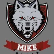 MIKE316