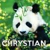 CccHrystian
