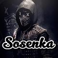 Sosenka - zdjęcie